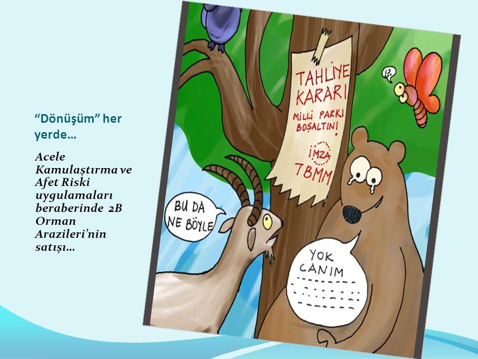 Dönüşüm her yerde… Acele Kamulaştırma ve Afet Riski uygulamaları beraberinde 2B Orman Arazileri'nin satışı…
