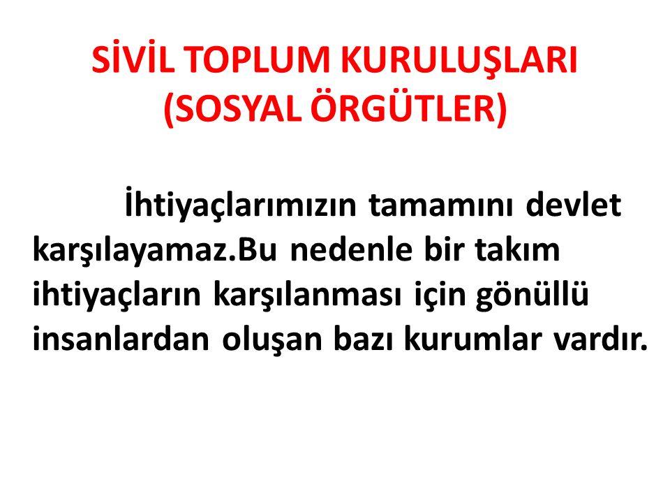 SİVİL TOPLUM KURULUŞLARI (SOSYAL ÖRGÜTLER)
