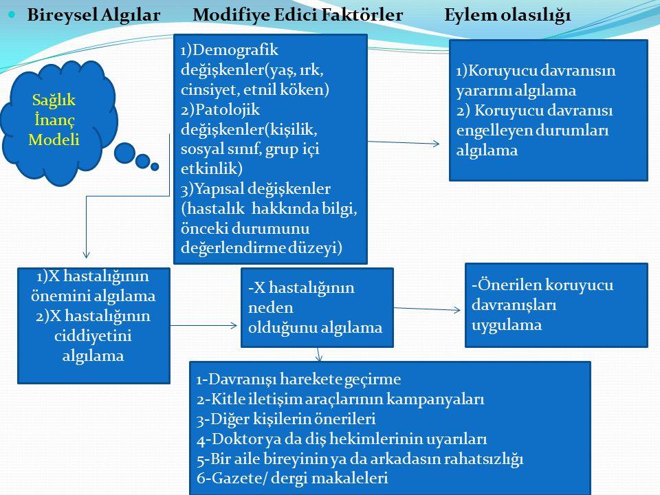 Bireysel Algılar Modifiye Edici Faktörler Eylem olasılığı