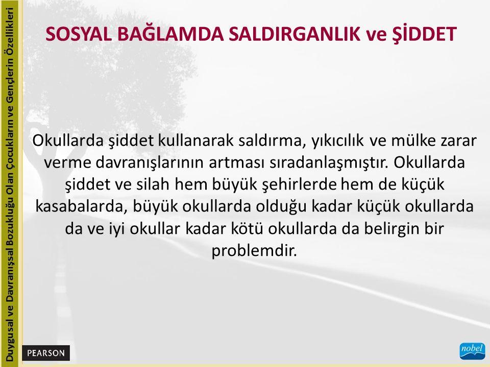 SOSYAL BAĞLAMDA SALDIRGANLIK ve ŞİDDET