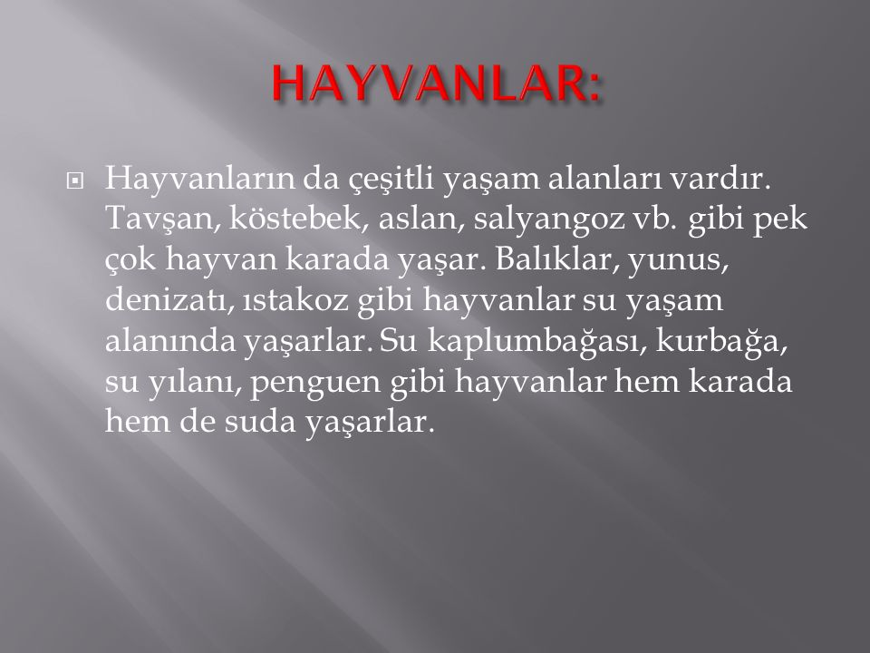 HAYVANLAR: