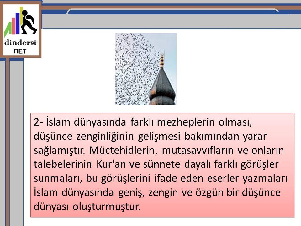 2- İslam dünyasında farklı mezheplerin olması, düşünce zenginliğinin gelişmesi bakımından yarar sağlamıştır.