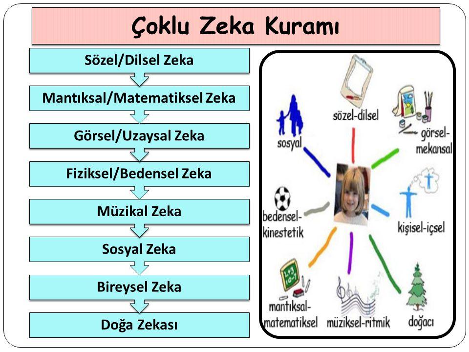 Fiziksel/Bedensel Zeka Mantıksal/Matematiksel Zeka