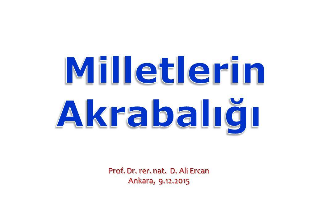 Prof. Dr. rer. nat. D. Ali Ercan
