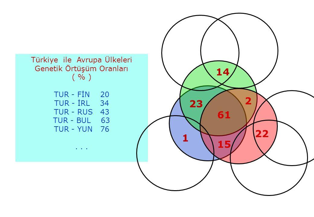 BUL Türkiye ile Avrupa Ülkeleri. Genetik Örtüşüm Oranları. ( % ) TUR - FİN 20. TUR - İRL 34.