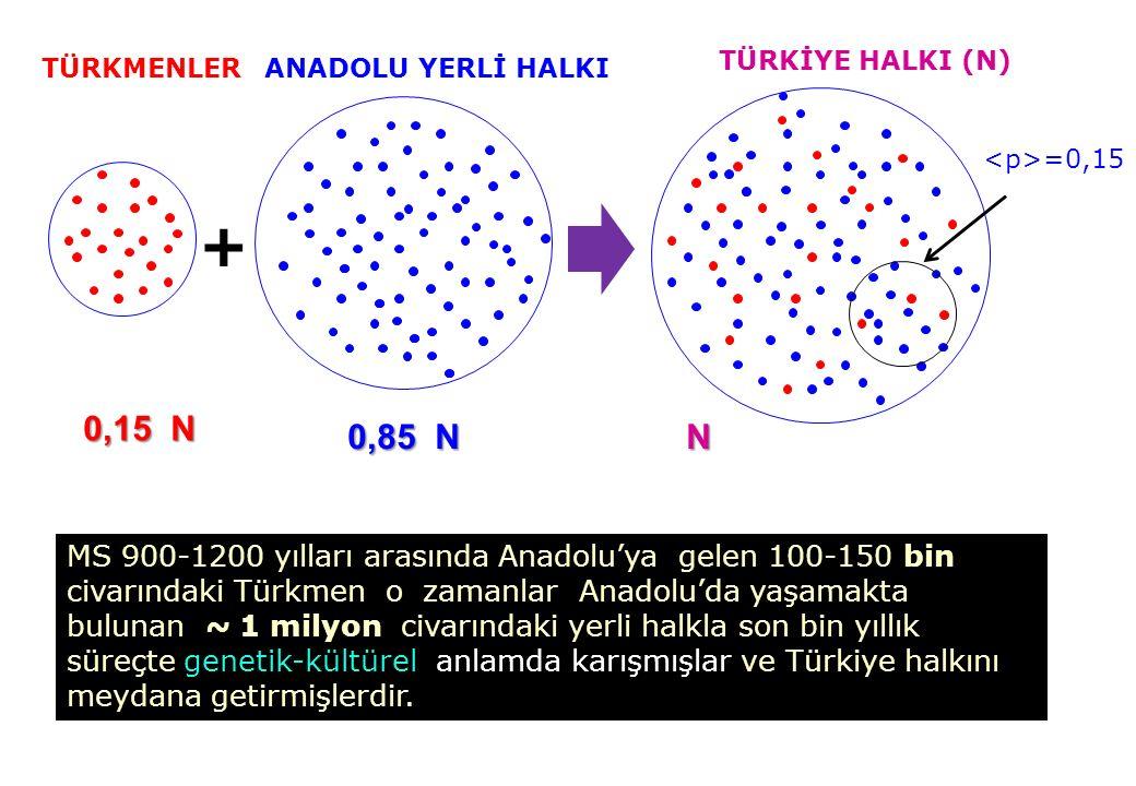TÜRKİYE HALKI (N) TÜRKMENLER. ANADOLU YERLİ HALKI. <p>=0,15. + 0,15 N. 0,85 N. N.