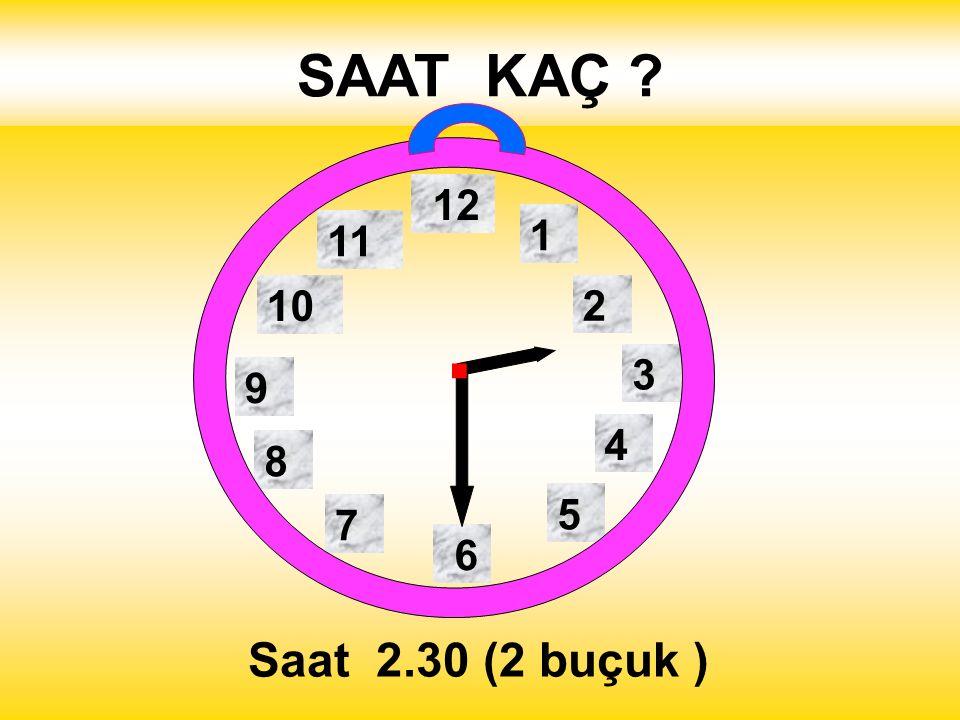 SAAT KAÇ 1 2 3 4 5 12 11 10 6 9 8 7 . Saat 2.30 (2 buçuk )