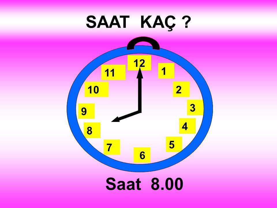 SAAT KAÇ 1 2 3 4 5 12 11 10 6 9 8 7 Saat 8.00