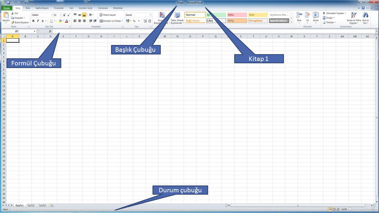 Başlık Çubuğu Kitap 1 Formül Çubuğu Durum çubuğu ENF-101-Rev.1.2