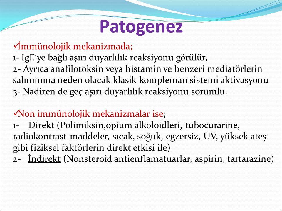 Patogenez İmmünolojik mekanizmada;