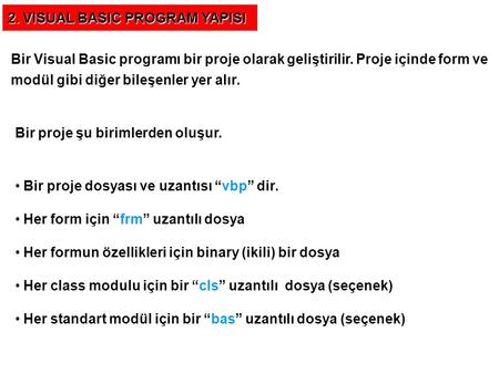 2. VISUAL BASIC PROGRAM YAPISI