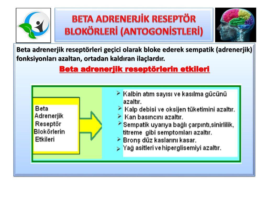 Beta blokerleri