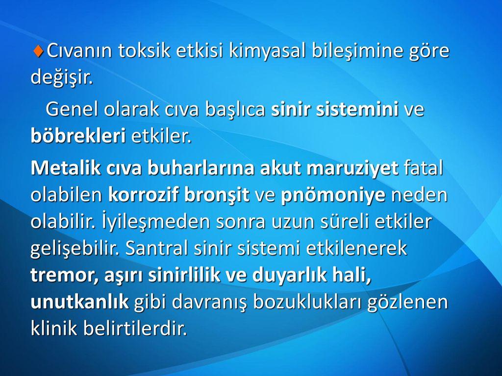 Türkiye'nin Rusya ve İran'la koordinasyonu nedeniyle Astana formatının gelişimi ABD'yi tahrik ediyor 44