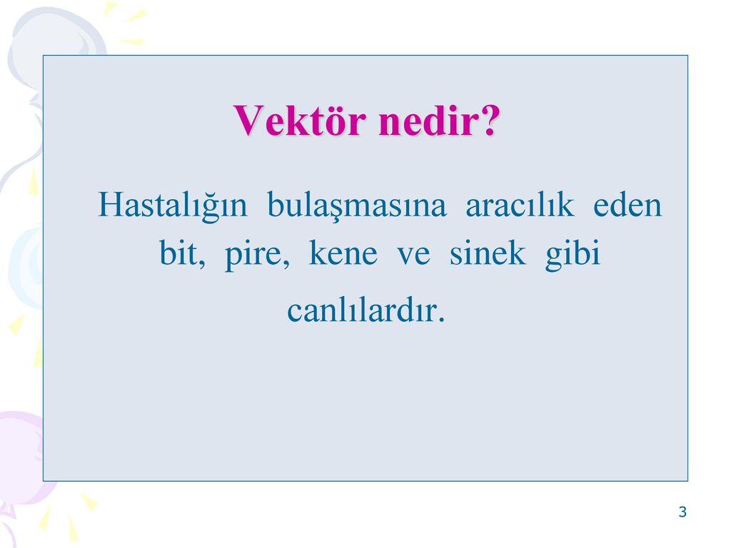 Türkiyenin en ölümcül bulaşıcı hastalığı