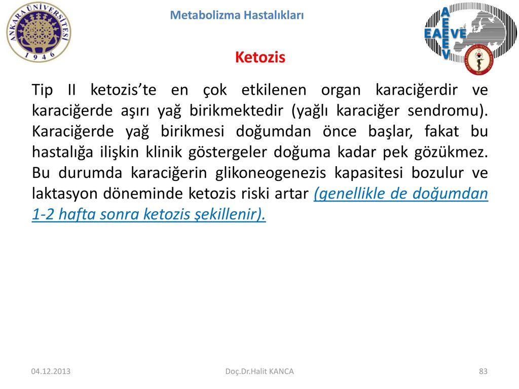 Türkiye, Fıratın doğusunu da Suriyeye vermiyorum, ÖSO vasıtasıyla yönetirim derse büyük risklerle karşılaşır 68