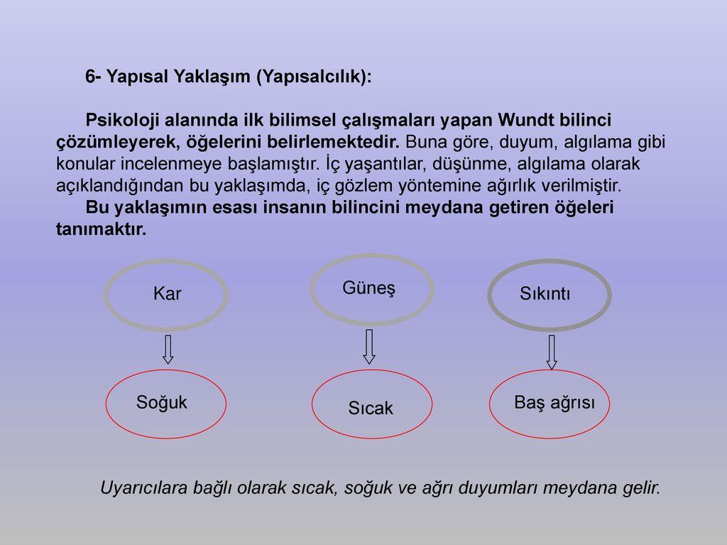 Toksoplazmoz bulaşıcı mıdır, değil mi Toksoplazmoz: enfeksiyon yolları, tanı, önleme 64