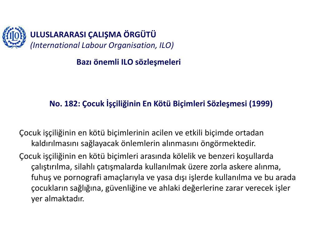 Uluslararası işçilik uzmanlığı