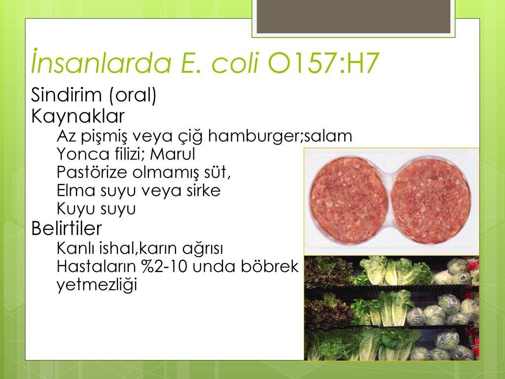 E. coli: semptomlar