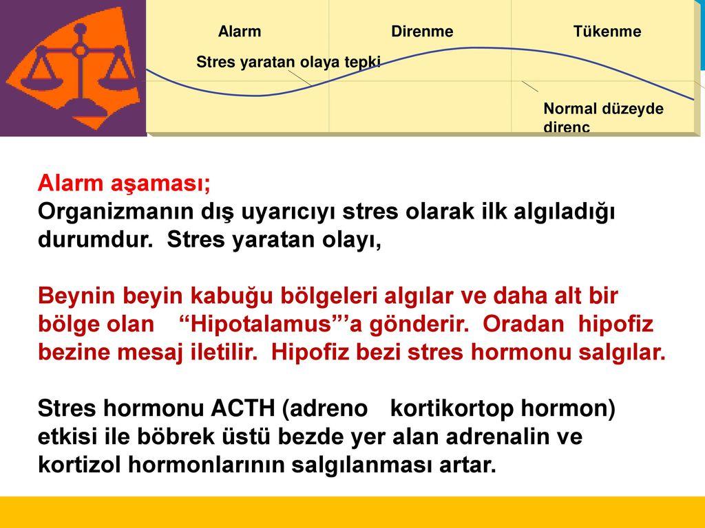 Kortizol veya Stres Hormonu