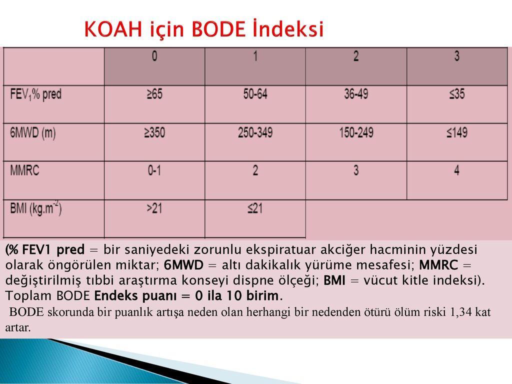 Kronik Obstrüktif Akciğer Hastalığı (KOAH) - ppt indir