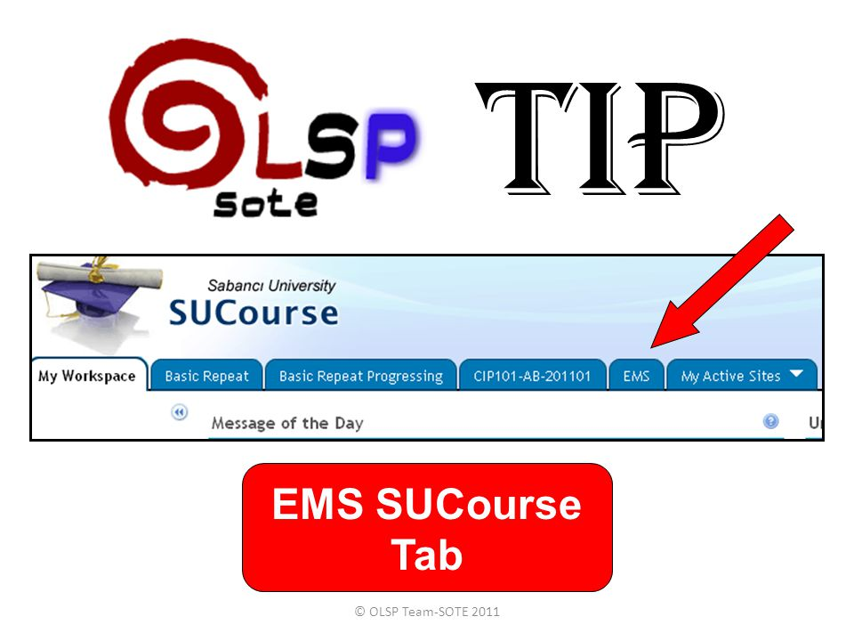 TIP EMS SUCourse Tab © OLSP Team-SOTE 2011