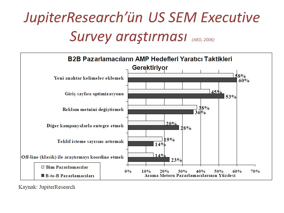 JupiterResearch'ün US SEM Executive Survey araştırması (ABD, 2006)