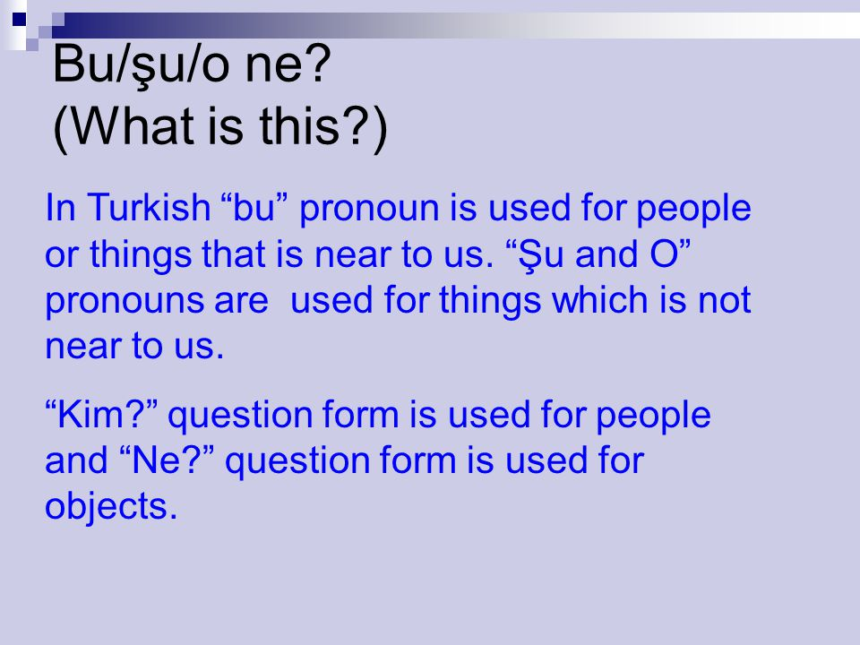 Bu/şu/o ne (What is this )