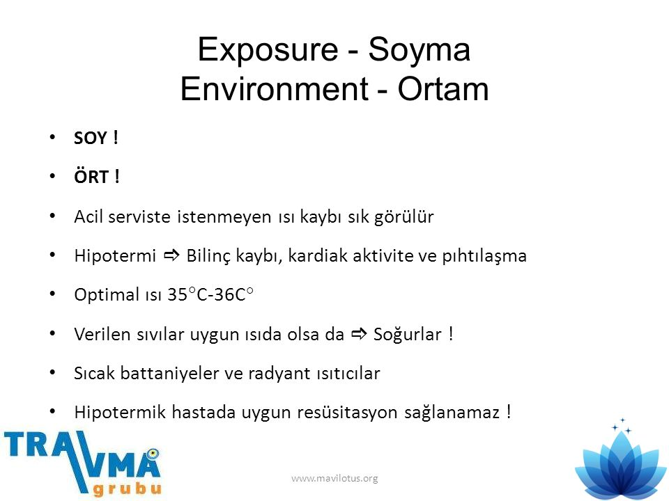 Exposure - Soyma Environment - Ortam