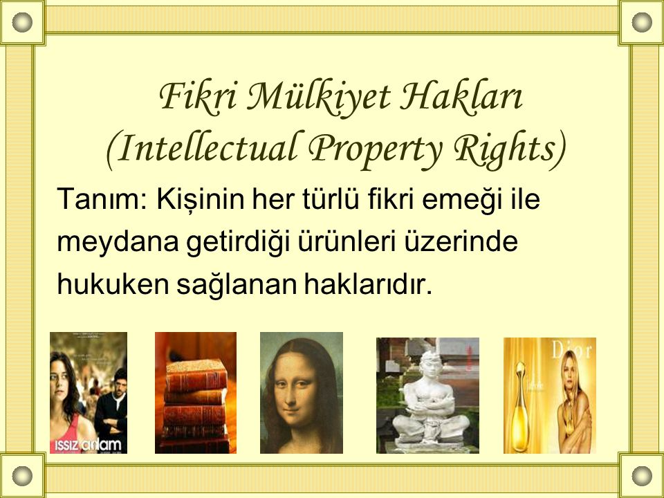 Fikri Mülkiyet Hakları (Intellectual Property Rights)
