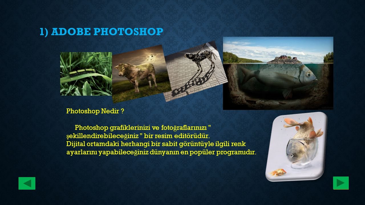 1) ADOBE PHOTOSHOP Photoshop Nedir