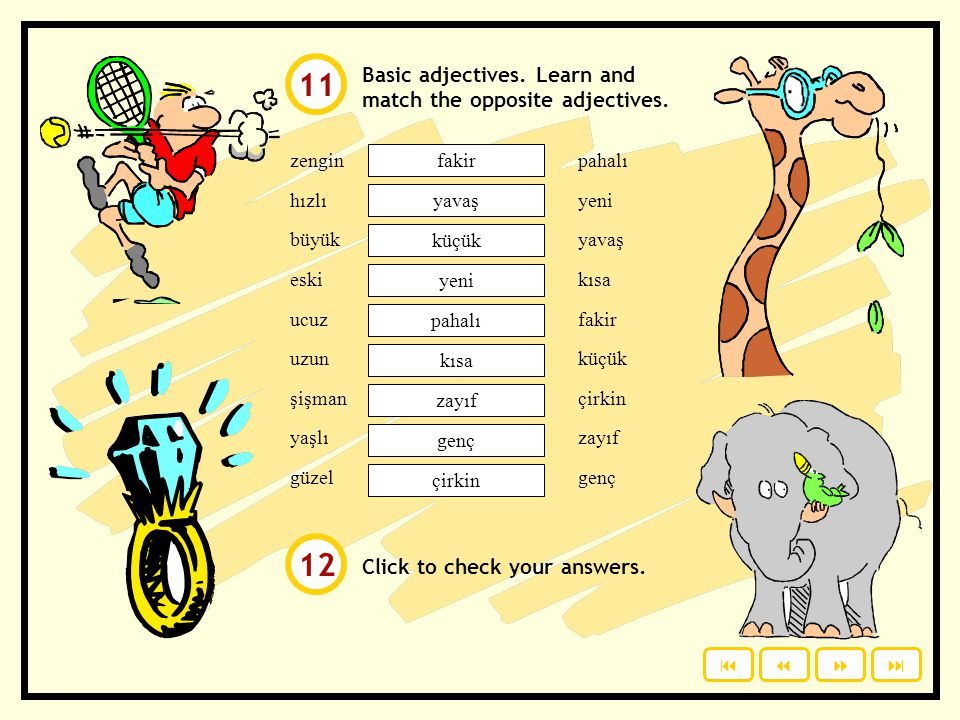11 12 Basic adjectives. Learn and match the opposite adjectives.