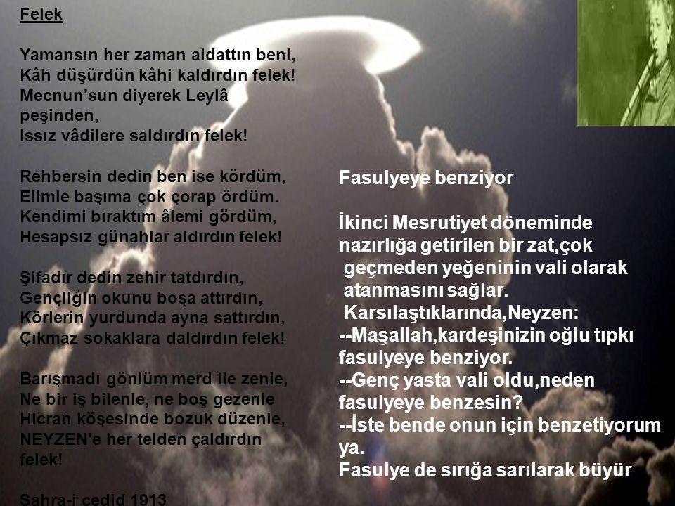 Neyzen Tevfik Vasfiayaz 24 Mart 1879da Bodrumda Doğdu Ppt Indir