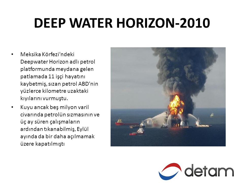 DEEP WATER HORIZON-2010