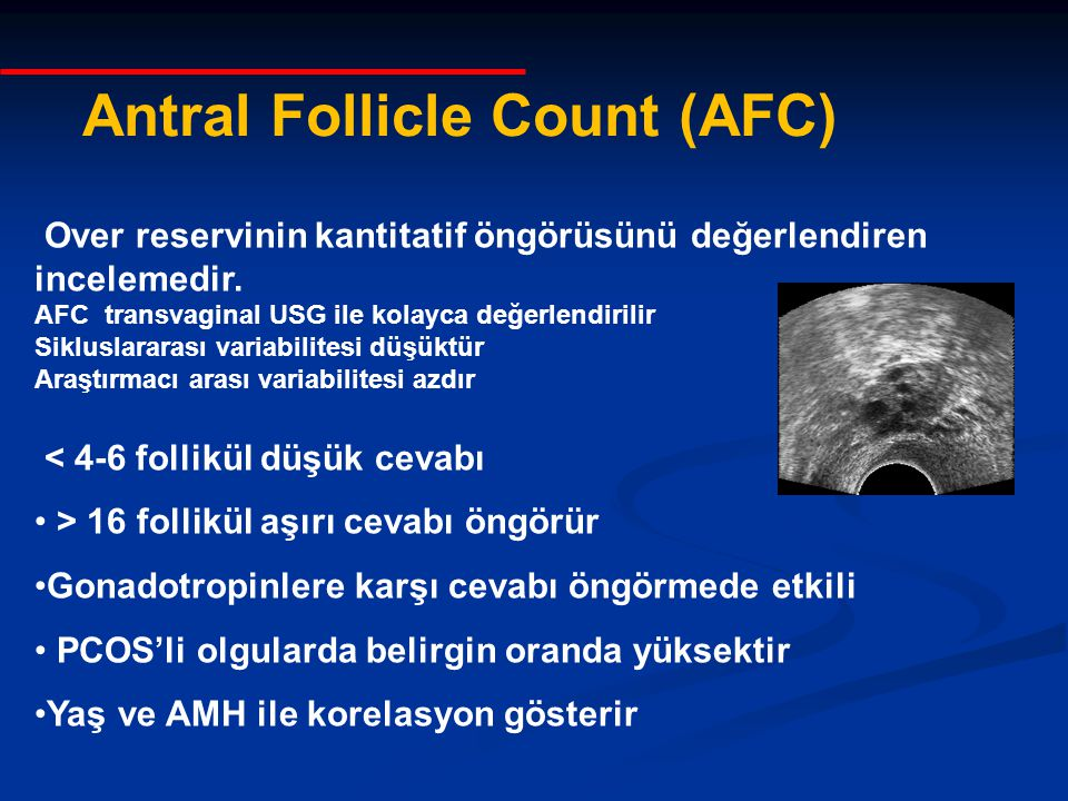 Antral Follicle Count (AFC)