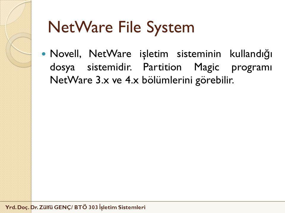 NetWare File System