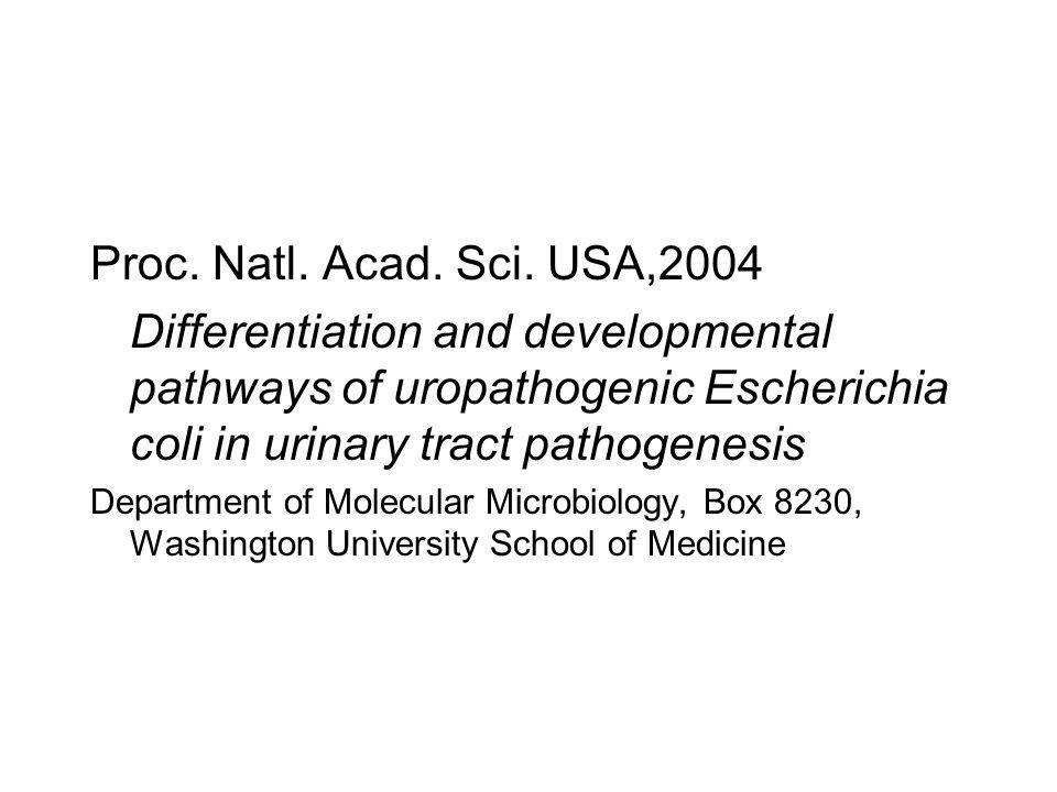 Proc. Natl. Acad. Sci. USA,2004 Differentiation and developmental pathways of uropathogenic Escherichia coli in urinary tract pathogenesis.