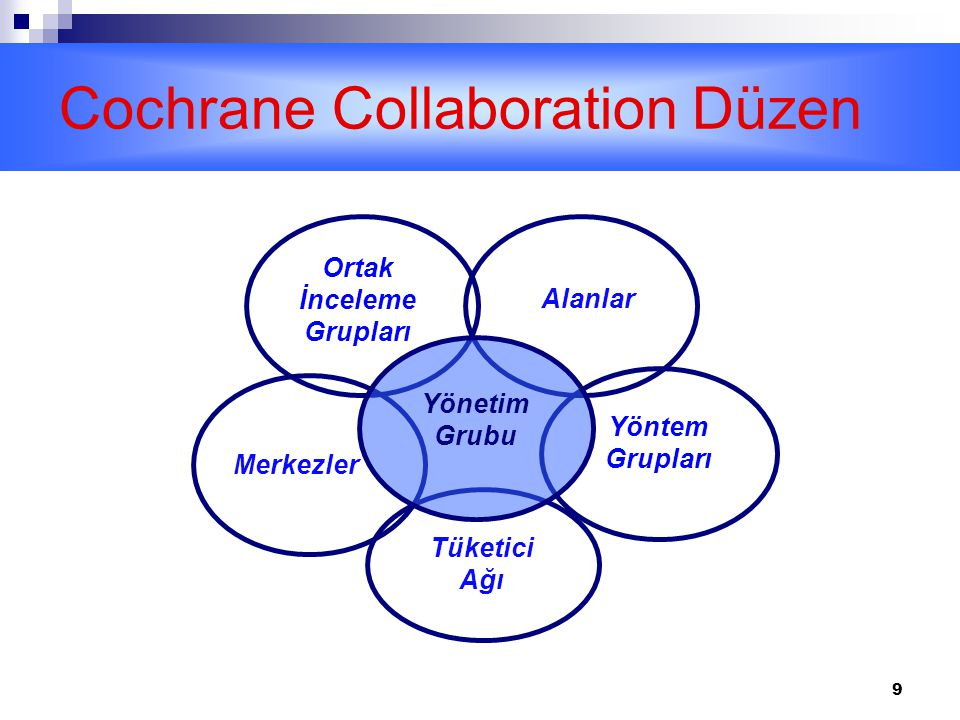 Cochrane Collaboration Düzen