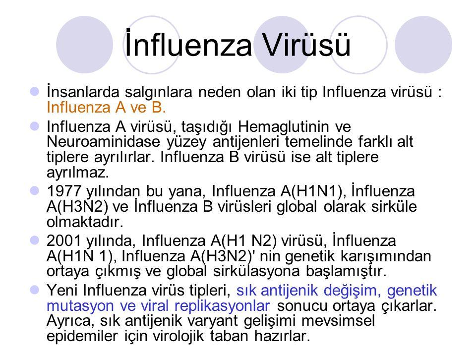 Bir Gebe İnfluenza: Belirtiler, Tedavi ve Önleme