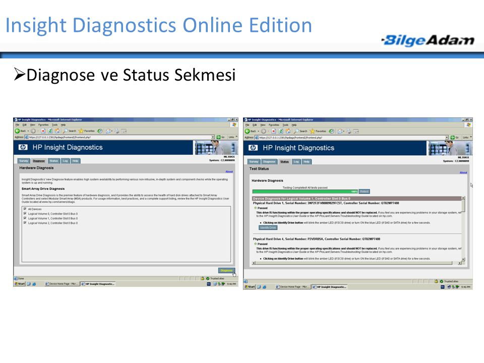 Insight Diagnostics Online Edition
