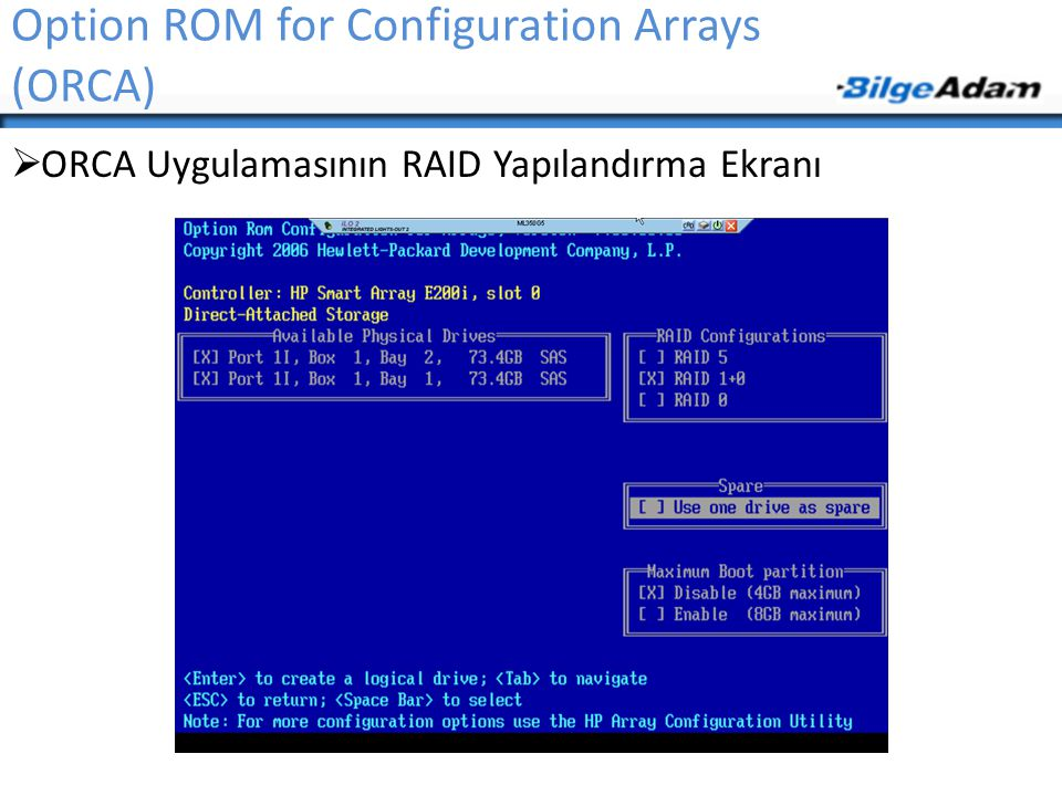 Option ROM for Configuration Arrays (ORCA)