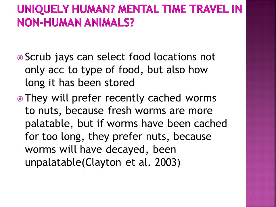Uniquely Human Mental time travel in non-human animals