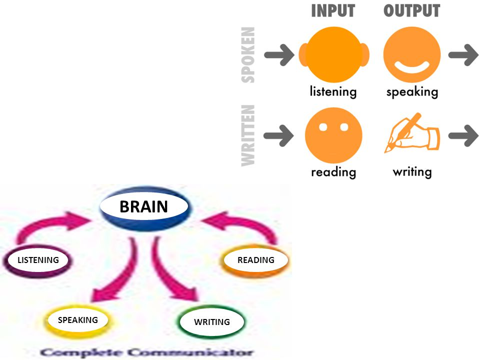 BRAIN LISTENING READING SPEAKING WRITING