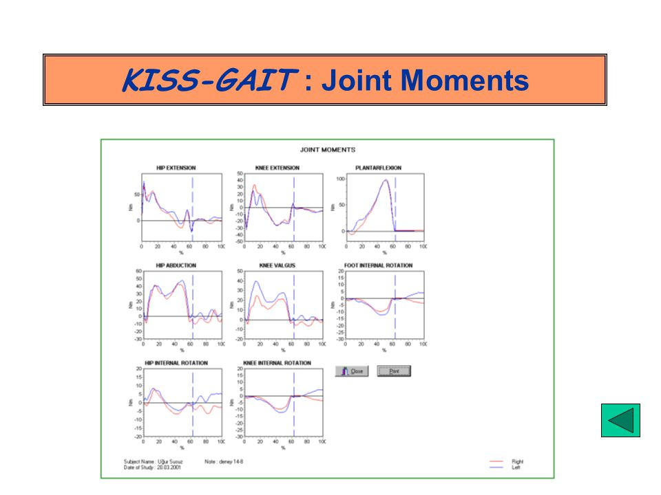 KISS-GAIT : Joint Moments