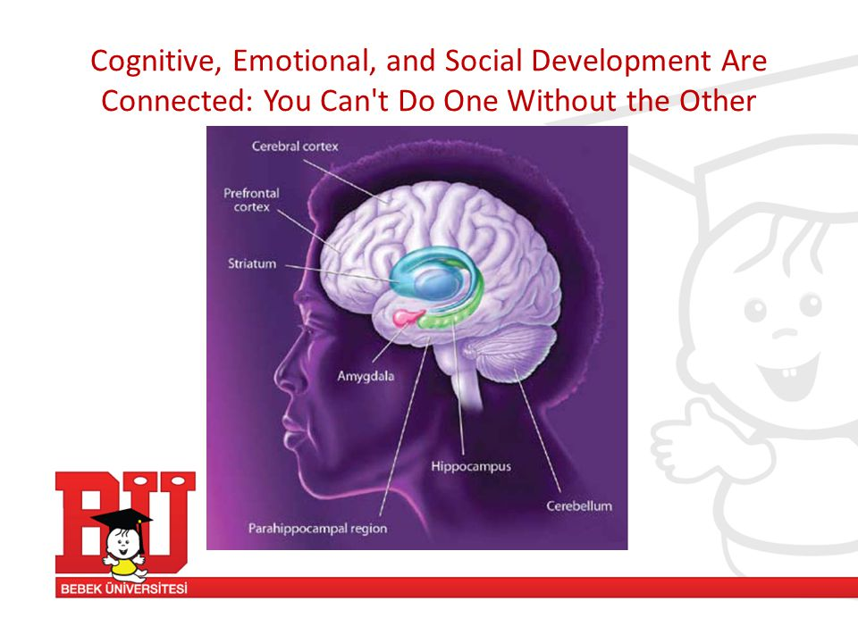 Cognitive, Emotional, and Social Development Are Connected: You Can t Do One Without the Other