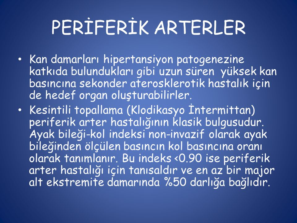 PERİFERİK ARTERLER