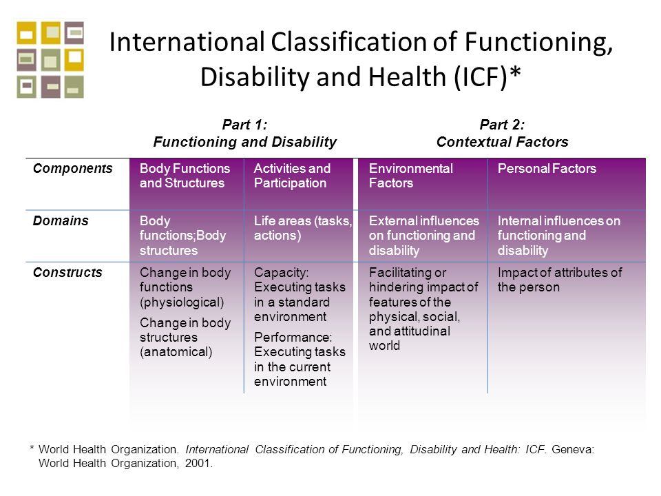 Part 1: Functioning and Disability Part 2: Contextual Factors