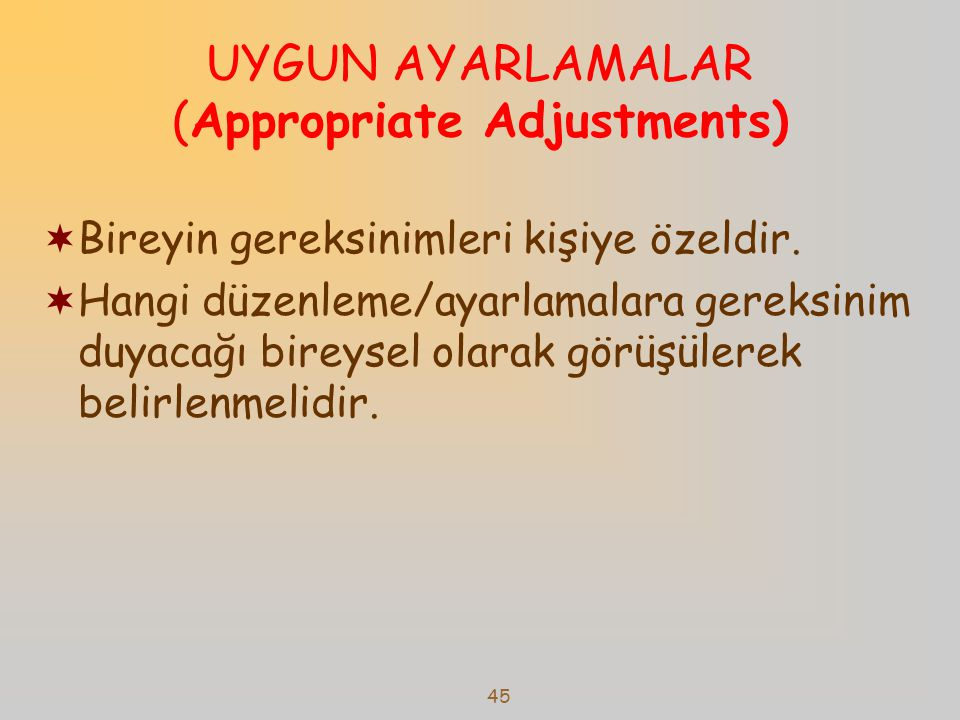 UYGUN AYARLAMALAR (Appropriate Adjustments)