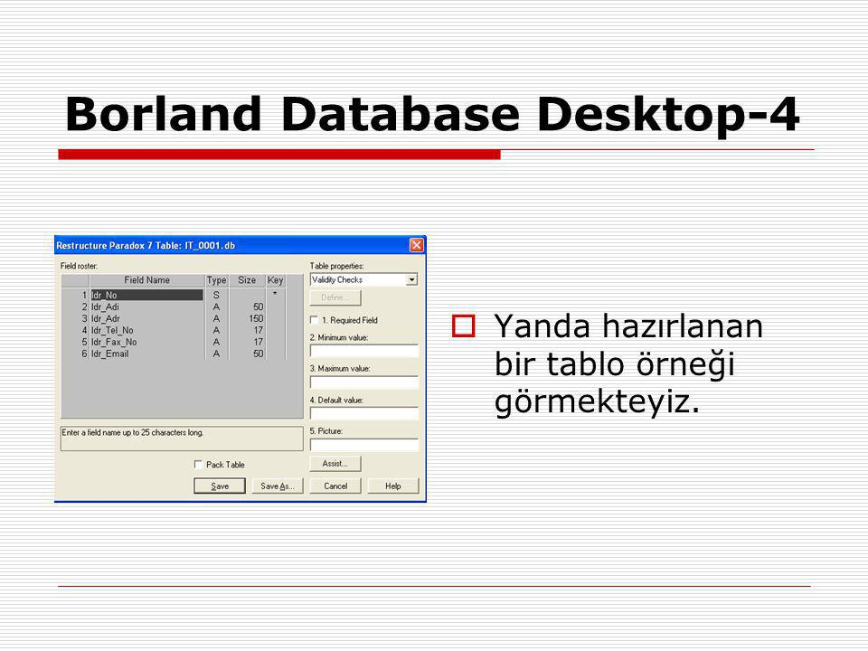Borland Database Desktop-4