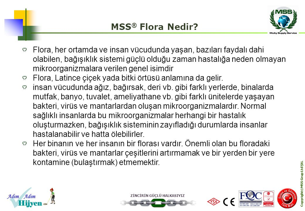 Copyright©MSS Grup Ltd Şti.