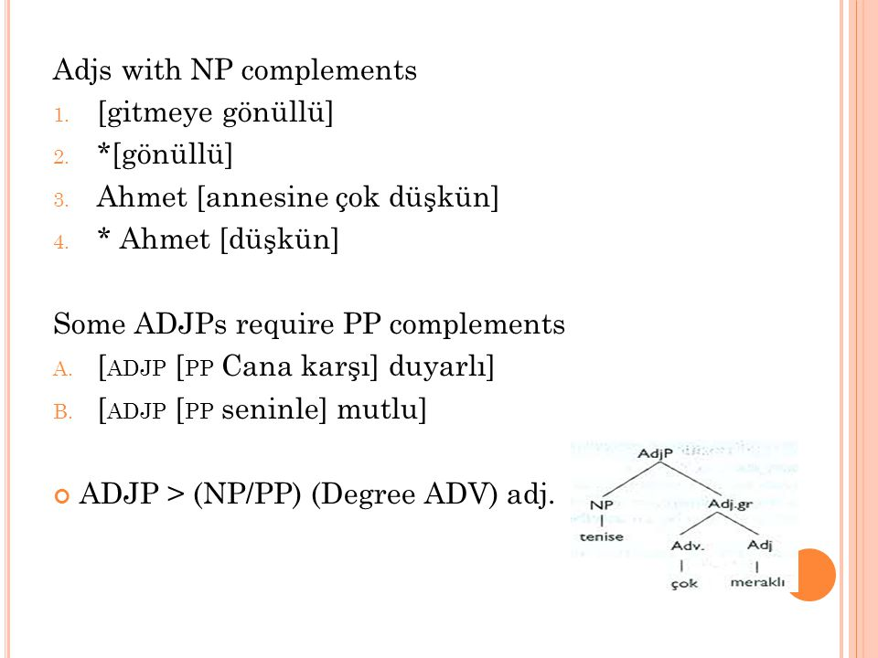 Adjs with NP complements